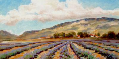 Matanzas Creek Oil Painting